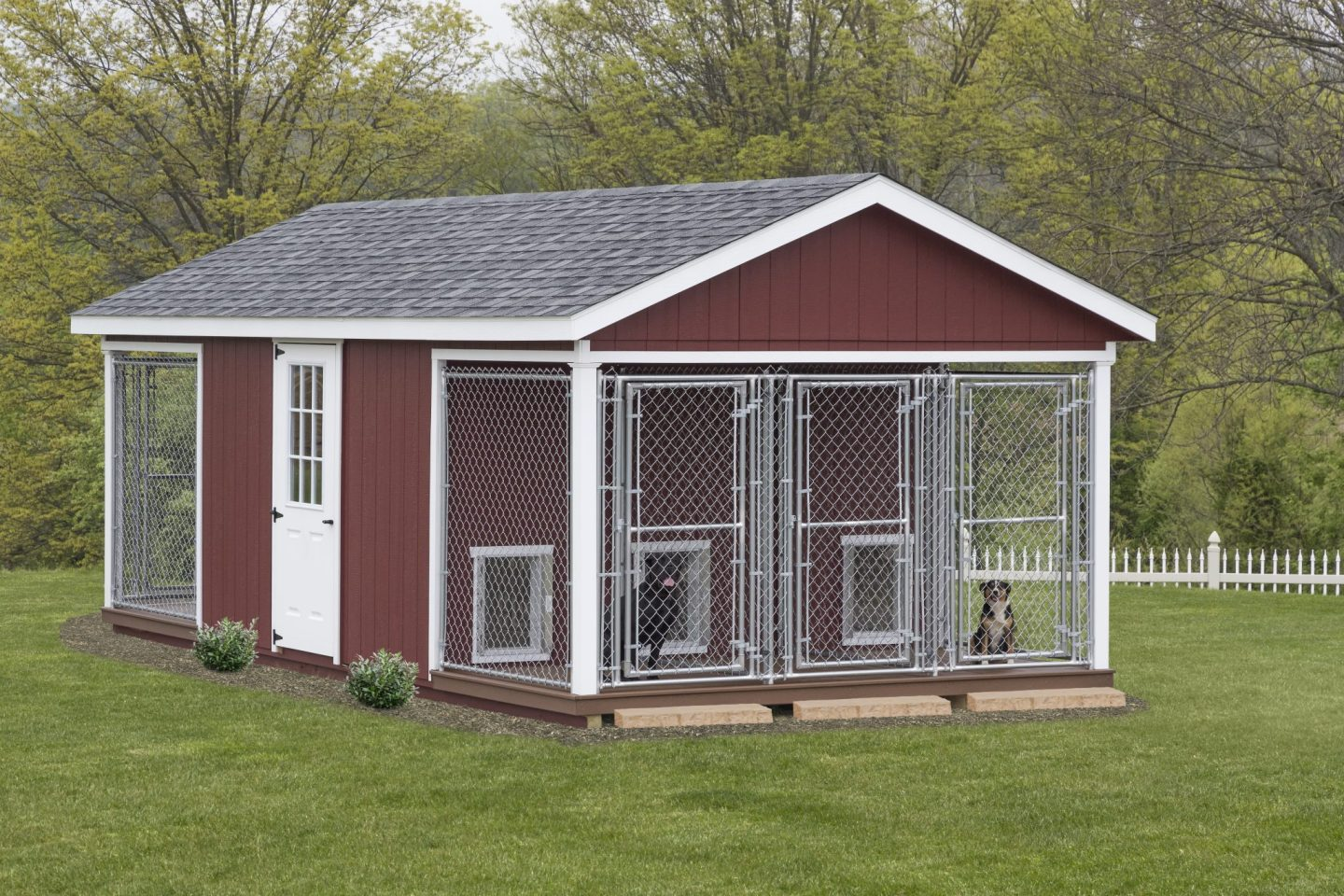 Outdoor Dog Kennels Dog Kennels For Sale Stoltzfus
