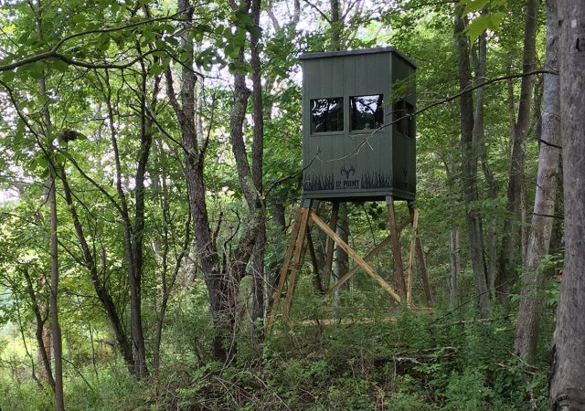 12 Point Hunting Blinds